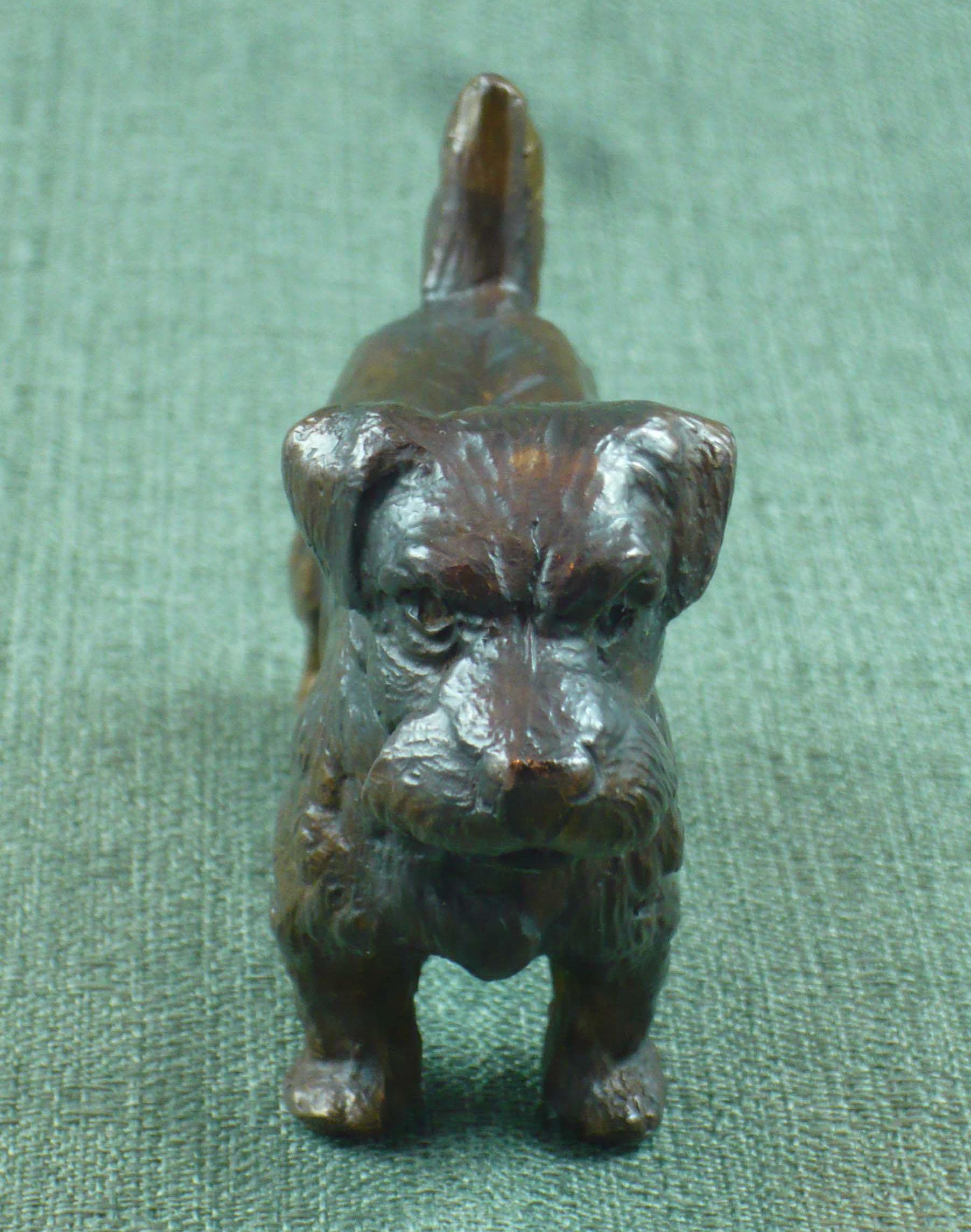 FC1175 Norfolk Terrier F