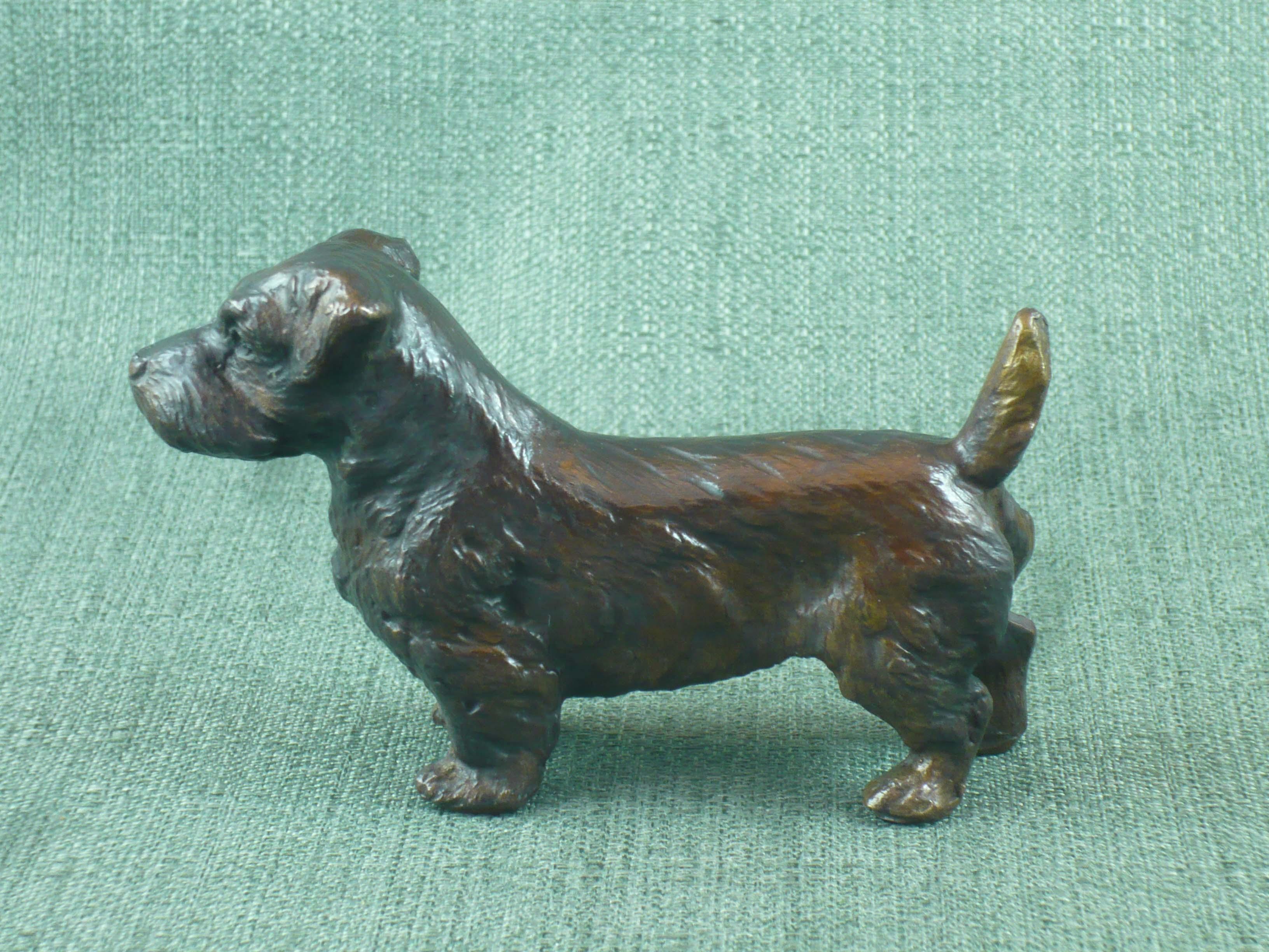 FC1175 Norfolk Terrier
