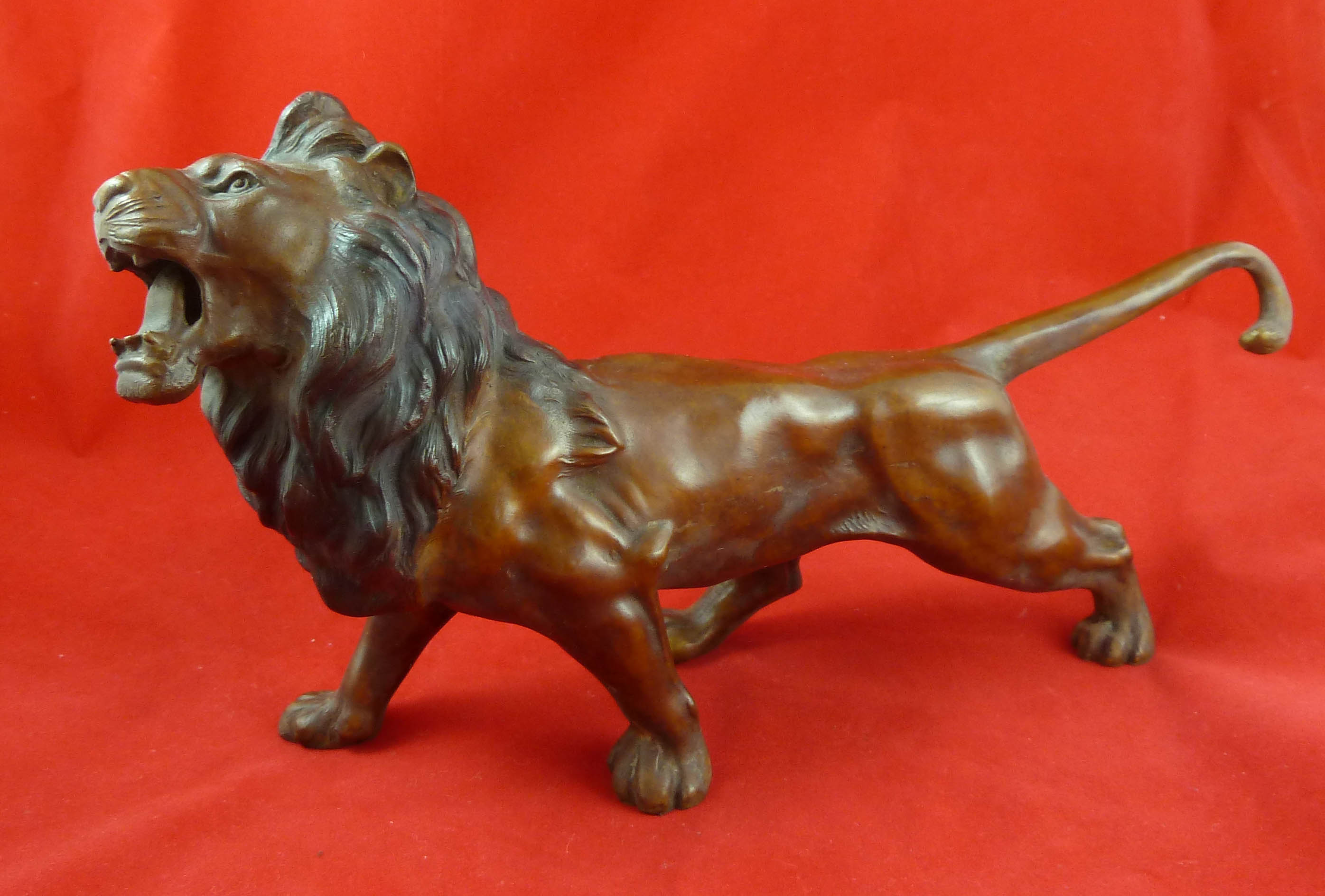 FC1206 Lion Roaring